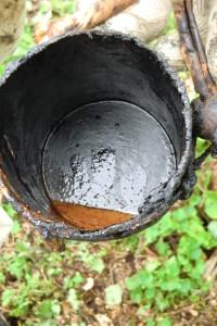 うるしの樹液